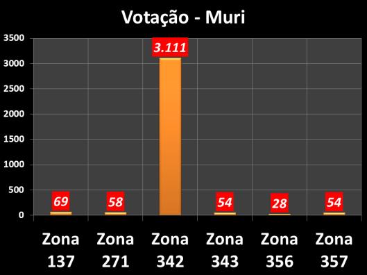 Votação do vereador Muri em 2012