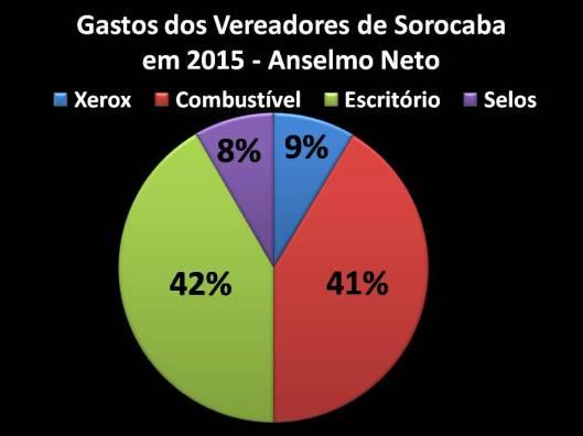 Gastos de Vereador de Sorocaba em 2015: Anselmo Neto - Porcentagem