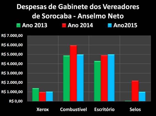 Gastos de Vereador de Sorocaba: Anselmo Neto no Mandato